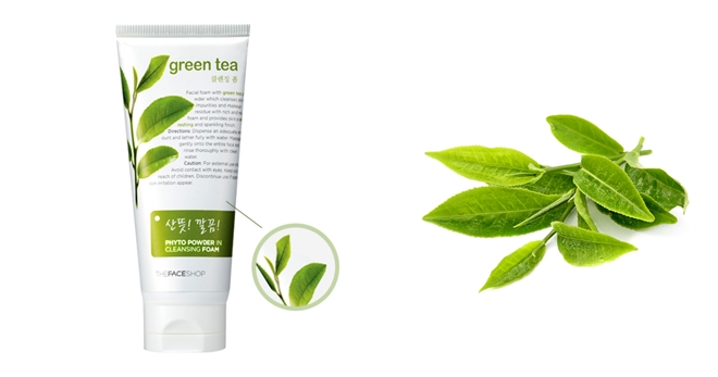 Sữa rửa mặt Green Tea The Face Shop 170ml