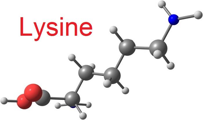 Bột Lysine Úc Cho Trẻ Uống Có Tốt Không, Giá Bao Nhiêu, Mua Hàng Ở Đâu Chính Hãng?