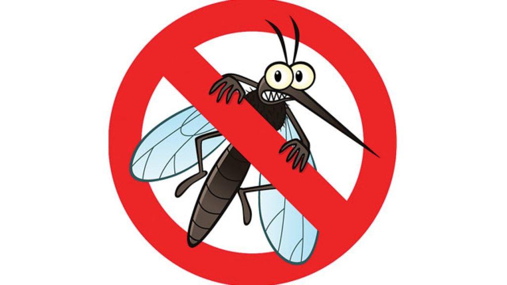 [Review] Kem Muỗi Soffell Dùng Cho Bé Có An Toàn Không?